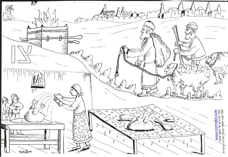 Yechiel offner for Esky coloring pages